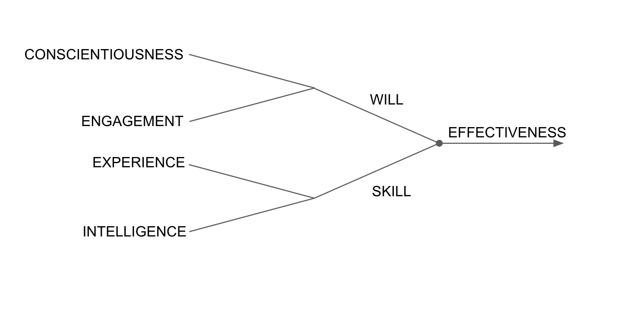 Conscientiousness, engagement, experience, and intelligence
