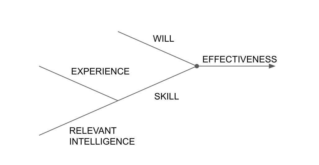Experience and intelligence